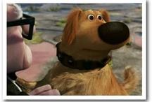 """""""Look! Squirrel!"""" / Pinterest = """"Look! Squirrel!"""" Distraction Zone / by Debi Taylor-Hough"""