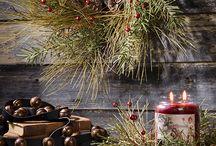 Christmas Season / by Chris Ammons-Morgan