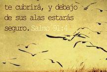 Dios te habla / by Maria Jose Rodrigues