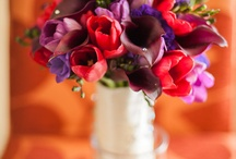 Party Flowers / by Brittany Ruiz