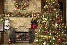 Christmas  / by Zoe Gryparis