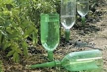 Reduce/Reuse/Recycle in the Garden / by Sow and So
