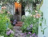 gardening/ outdoors / by Kirsten Hutton