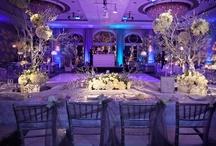 winter-wonderland wedding  / by Amber Mickle-Herrmann
