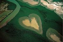 Hearts / by Karen Tolman