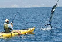 Fishing // hooks • rods / Off coast  / by Jayve Macfudge