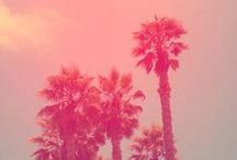 I Heart Pink / by Cyndi Walker