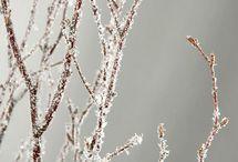 Christmas / by Jane Huey