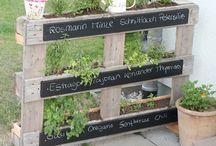 Gardening / Love Herb Gardens. / by Betsy Davis