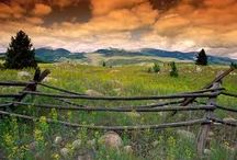 My Montana / by Madeline Forster