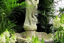 Garden Statues / by Suzanne Jolly