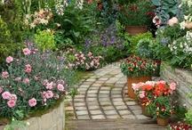 For my Garden / by Debbie Weaver