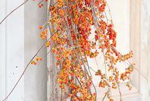 Autumn / by Jessica Neff-Snyder ~ Guten Tag Home & Garden