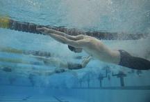 Minnesota state swim meet / by St. Cloud Times newspaper/online