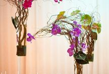 Centerpiece ideas / by Beth Streed