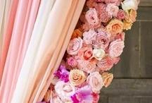 Flowers and gardening / Flowers and gardening ... The best collection of flowers and gardening methods / by Elsie Sanchez