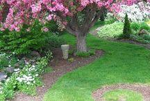 Gardens & Greenery. / by Kitty J Pettigrew
