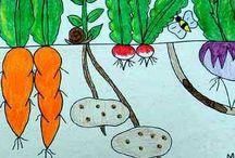 garden/fruit and veggies / by Chrystal B