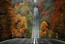 Seasons I never see / by Amanda Edens
