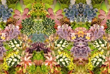 Fabric & Textile technique / Techniques/ ideas / by Diane Lawton