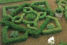 Gardening we love / by University of South Florida Botanical Gardens