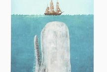 Sperm Whale Illustrations / by K
