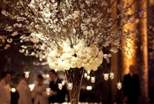 centerpieces / by Susan Strom