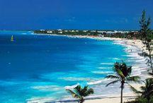 Caribbean Dreams / by Heidi Coyne