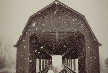 Seeking Cover... / by Carol Fraile