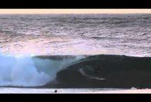 Vídeos / by AntiQueda Surfwear