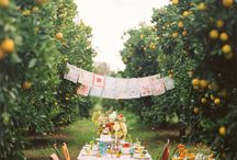 Celebrate / Celebrating all things! / by Cathy Floyd