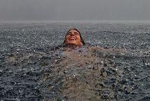 who is arieselephant / by Elizabeth Olsen