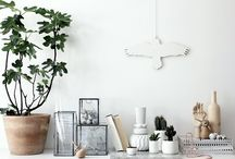 _home / details / it's all in the details / by Martina Mejermo