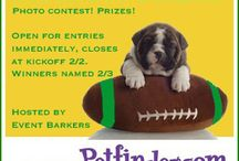Super Dog Sunday™ 2014 Charity Photo Contest for Petfinder Foundation / Football-themed photo contest for pets and Petfinder adoptables. / by Carrie Boyko