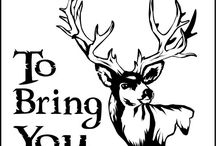 Deer Season / by Brittany Chandler