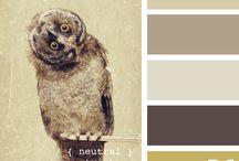 Colour Palettes / by Theresa Millington
