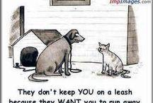 funny / by Kim Newton