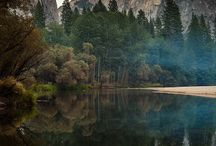 Yosemite / by Kim Strachan