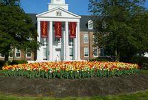 Salisbury University / by Salisbury University Center for International Education
