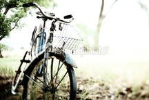 istockphotos / Istockphoto comps for inspiration/work / by Angela Baxter