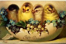 Easter Fun / by Cashmere & Camo