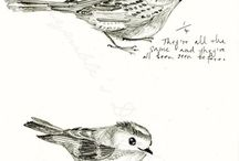 Art | Birds / Illustrations, sketches, and artwork featuring birds as the main subject matter / by J.J. Springer