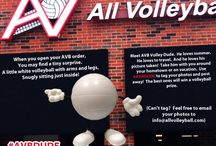 DUDE / Send us a picture of Dude in your hometown or on vacation, use #AVBDUDE or send them to info@allvolleyball.com, and the best one will win a  volleyball prize! / by All Volleyball