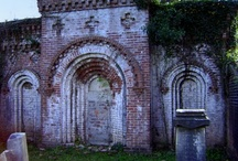 Rose Hill Cemetery / by Stephanie Lincecum