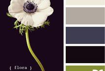 Color Palattes / by Annette Whelan