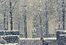 Paris / by Kevin Reeves