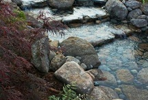 Water / Water features / by Amy Assiter