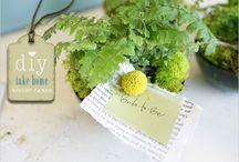 Wedding Ideas / by Kirsten Howard