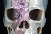 Skulls. / by The Sybarite