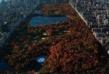 New York / by Miss Didi
